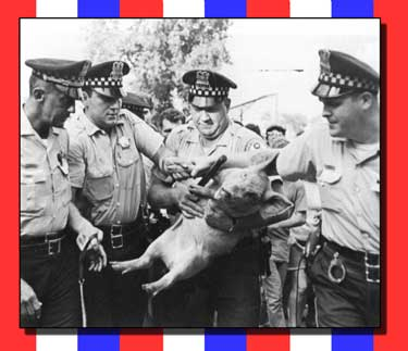 Pigasus and the Cops